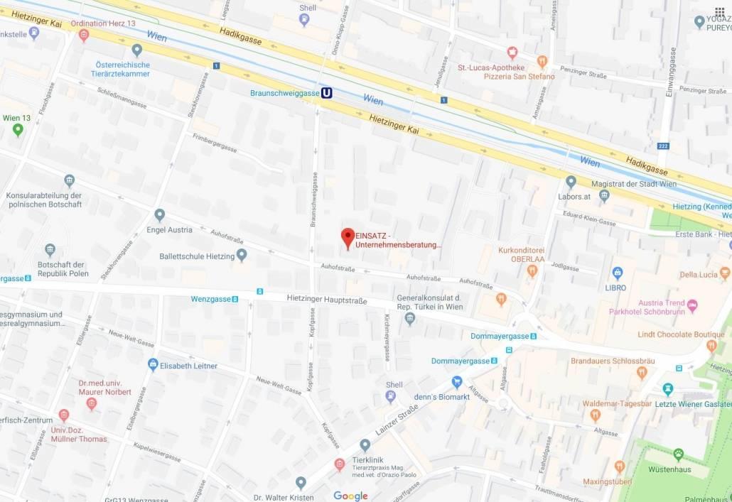 EINSATZ Agentur Google Maps_Marktforschung Wien